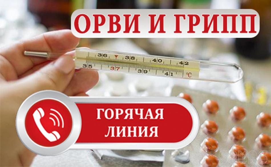 Работа Всероссийской горячей линии по профилактике гриппа и ОРВИ